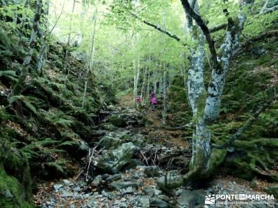 Yacimientos Atapuerca - Sierra de la Demanda; viaje diciembre senderismo